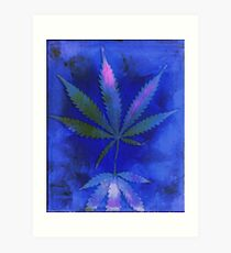 Hemp Lumen #2  Marijuana, Cannabis Art Print