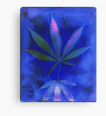 Hemp Lumen #2  Marijuana, Cannabis Canvas Print