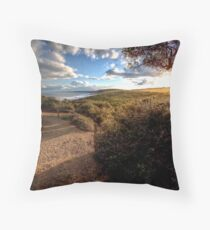 www.LyndenSmith.com - Point Addis Throw Pillow