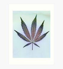 Hemp Lumen #7   Marijuana, Cannabis Art Print