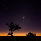 New Moon, Dirranbandi by Lachlan Kent