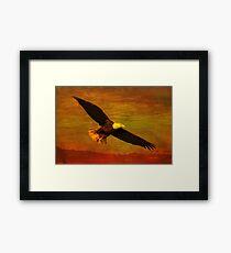 Eagle Spirit Framed Print