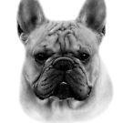 French Bulldog by Danguole Serstinskaja