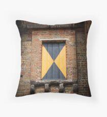 Mystery Window Throw Pillow