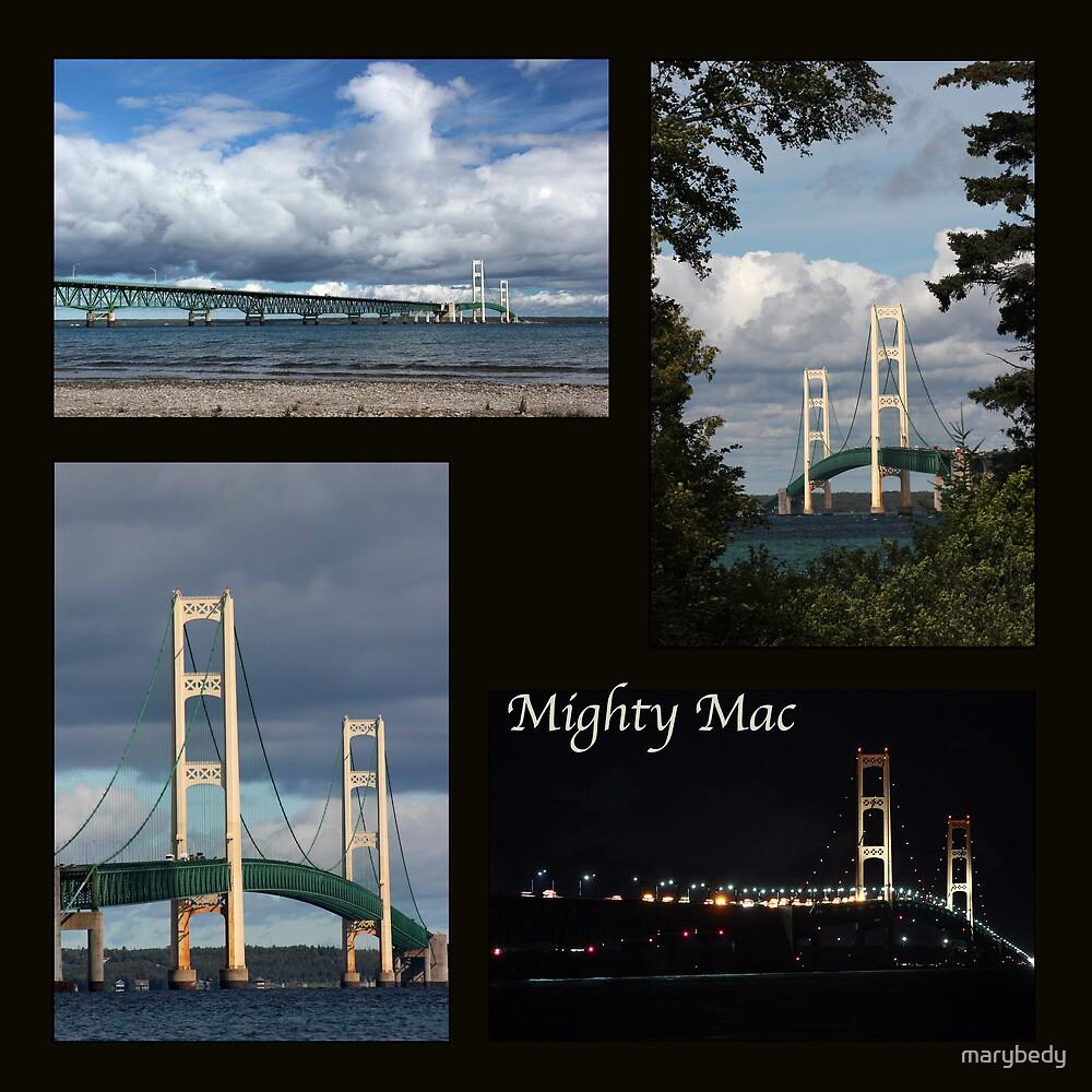 Mackinac Bridge Collage by marybedy