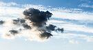 Teddy bear cloud by OlivierImages