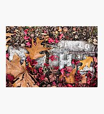 Autumn Bric-a-Brac Photographic Print