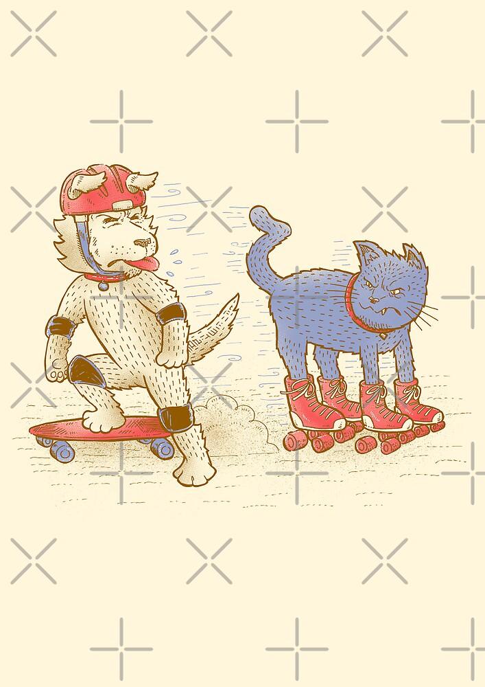 Skateboard dogs don't like roller skate cats by nickv47