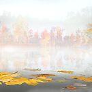 Float Fall by Igor Zenin
