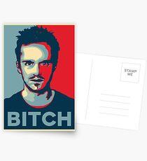 Pinkman, Bitch! Postcards