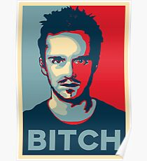 Pinkman, Bitch! Poster