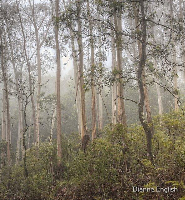 Misty Mt Wilson by Dianne English