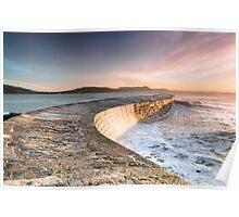 Sunkissed Cobb at Lyme Regis Poster