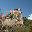 Kuenringer Castle Ruins by phil decocco