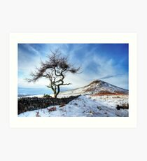 Winter at Roseberry Topping, North Yorkshire Art Print