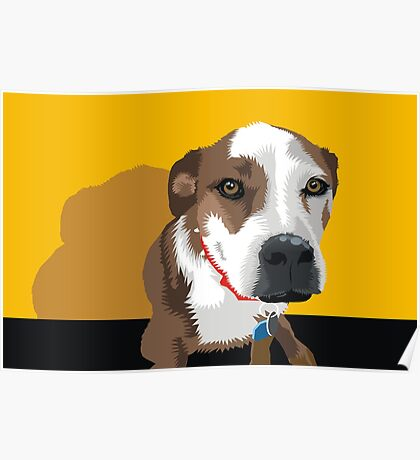 Polly the Wonder Dog Poster