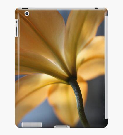 Capturing Light iPad Case/Skin