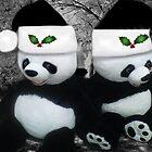 。◕‿◕。 PANDAS SPREADING CHEER AND JOY 。◕‿◕。  by ✿✿ Bonita ✿✿ ђєℓℓσ