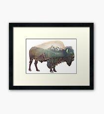 Bison and Independence Mine Framed Print