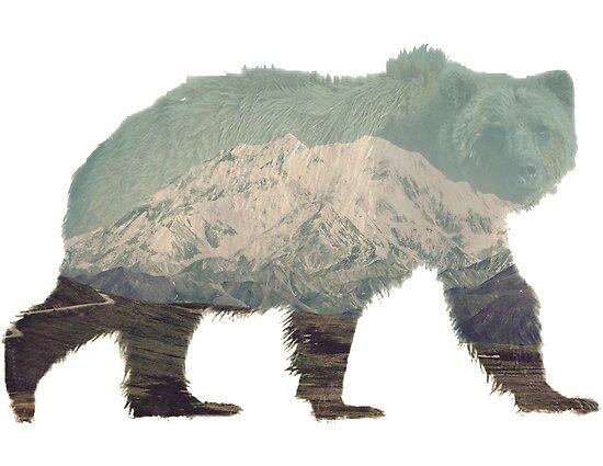 Denali Bear by caronjess