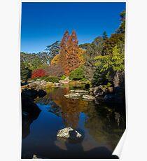Mt Tomah Botanical Gardens Poster
