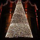 Christmas Tree by Robert Steadman
