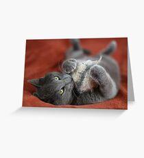 SunStoned Boris Greeting Card