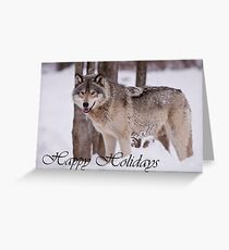 Timber Wolf Holiday Card 3 Greeting Card