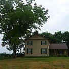 The Alexis Phelps house, Oquawka, Illinois by nealbarnett