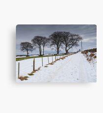 Snowy Track Canvas Print