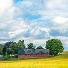 Red barn in a yellow field by Michael Brewer