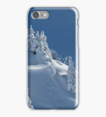 Frozen Winter Scene iPhone Case/Skin