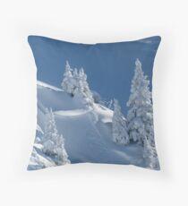 Frozen Winter Scene Throw Pillow