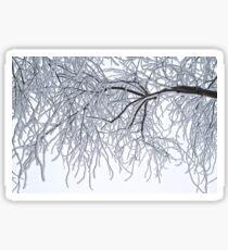 Frozen Branches Winter Theme Sticker