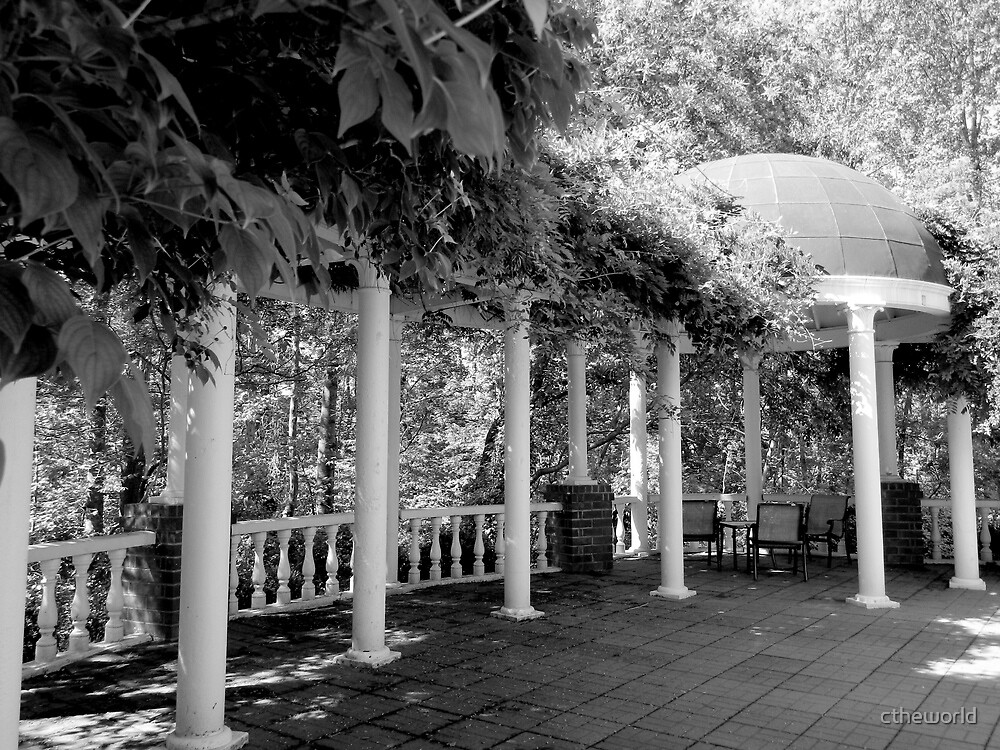 Garden Patio - B&W    ^ by ctheworld