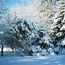 Winter Wonderland-Snow by MaeBelle