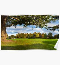 Elgin, Cooper Park Autumn Poster