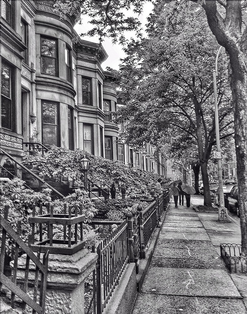 Park Slope, Brooklyn, New York by fauselr