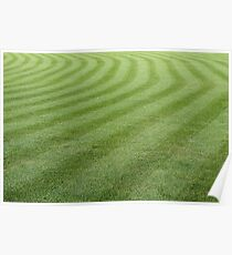 Green grass pattern. Poster