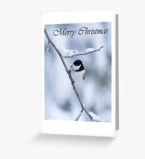 Chickadee Christmas Card 3 Greeting Card