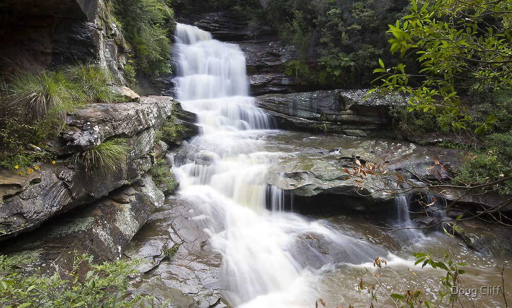 Oxford Falls NSW  by Doug Cliff
