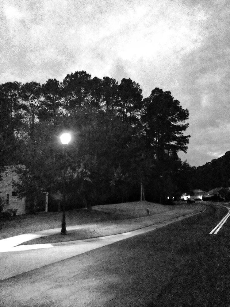Bluffton, South Carolima by fauselr