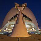 Opera house in Valencia. by naranzaria