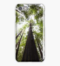 Redwood Trees  iPhone Case/Skin