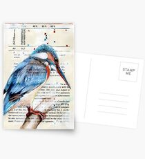 Kingfisher Postcards