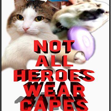 Not all heroes by pbcmemeking69