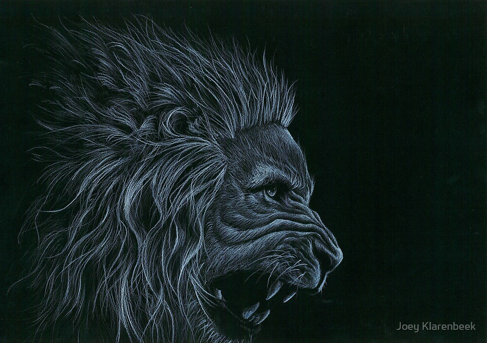 Lion  by Joey Klarenbeek