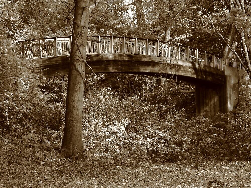 Old Bridge in Summer by Frank Romeo