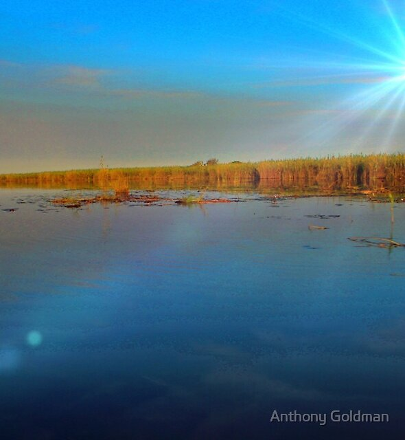 Late evening in the delta ! by Anthony Goldman