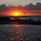 Sunset at Ricketts Point  by Stephanie Johnson